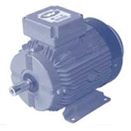 GD Series motors