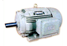 LT MOTORS - CG AC INDUCTION MOTORS
