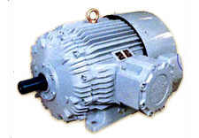 CG FLAMEPROOF MOTORS